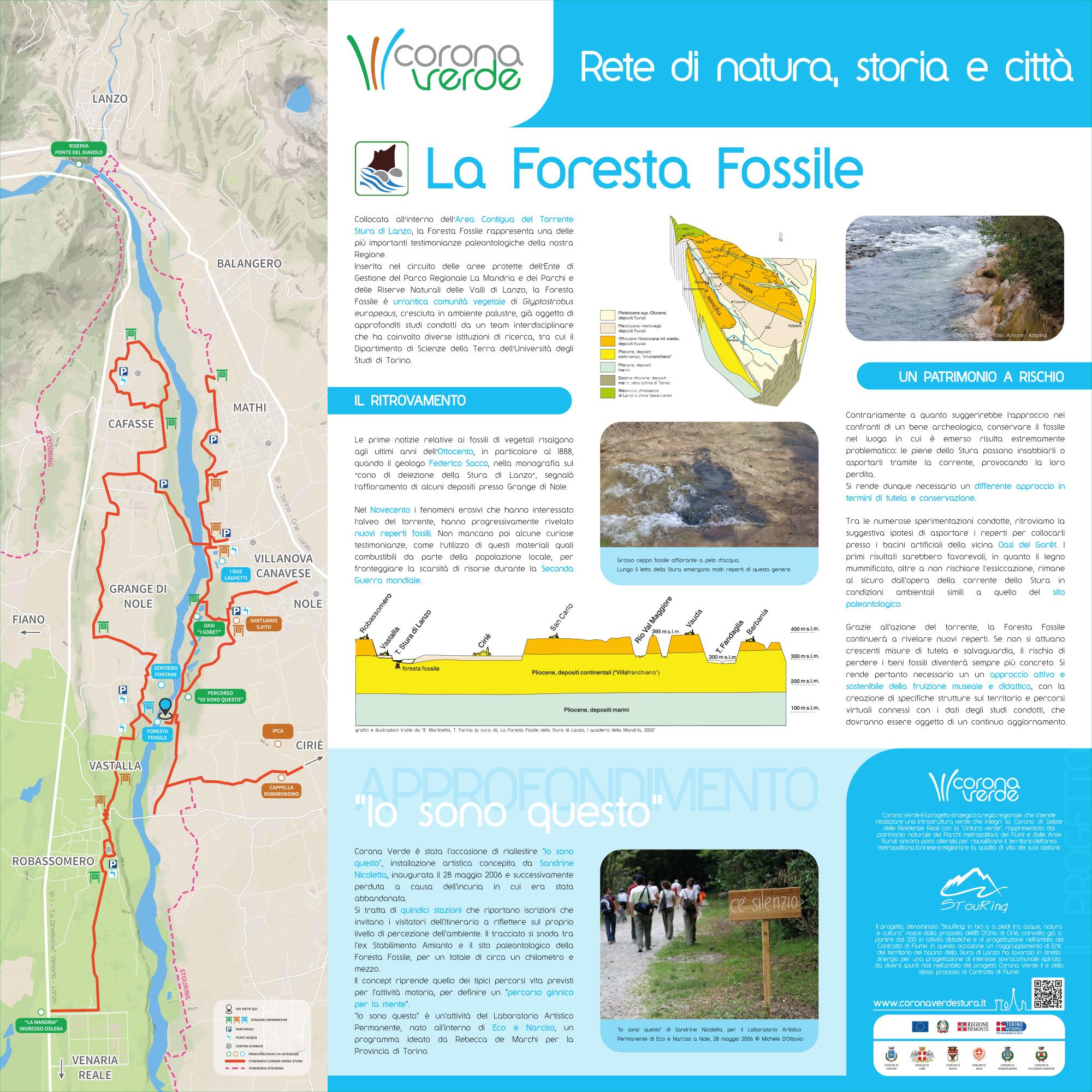 Nole - Foresta Fossile
